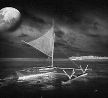 Moonlight on the Island by Clare Colins