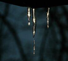 Diamonds on ice by Kareliz