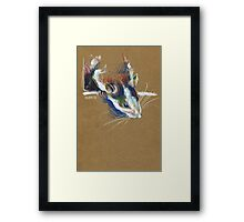 Ketamine the rat Framed Print