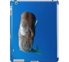 iWhale - Common Cachalot - Sperm Whale iPad case © 2013 Jakob Ziegler iPad Case/Skin