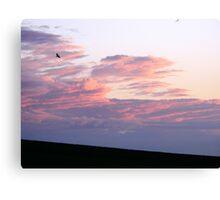 Folding Cloud Canvas Print