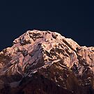 Annapurna Alpenglow by morealtitude
