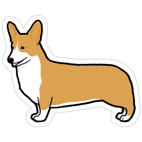 Pembroke Welsh Corgi by Jenn Inashvili