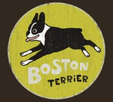 Vintage Style Boston Terrier by Jenn Inashvili