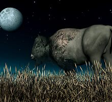 Bison Moon by Walter Colvin
