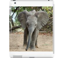 DON'T COME ANY CLOSER! -THE AFRICAN ELEPHANT – Loxodonta Africana iPad Case/Skin