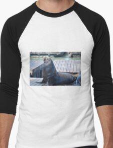 PIER 39, SAN FRAN, SEAL Men's Baseball ¾ T-Shirt