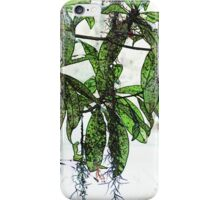 Moss on a Tree iPhone Case/Skin