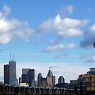 Toronto Skyline-West View by bluekrypton