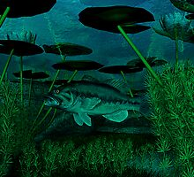 Black Bass by Walter Colvin