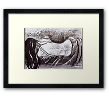 Cold, Lonely Nights Framed Print