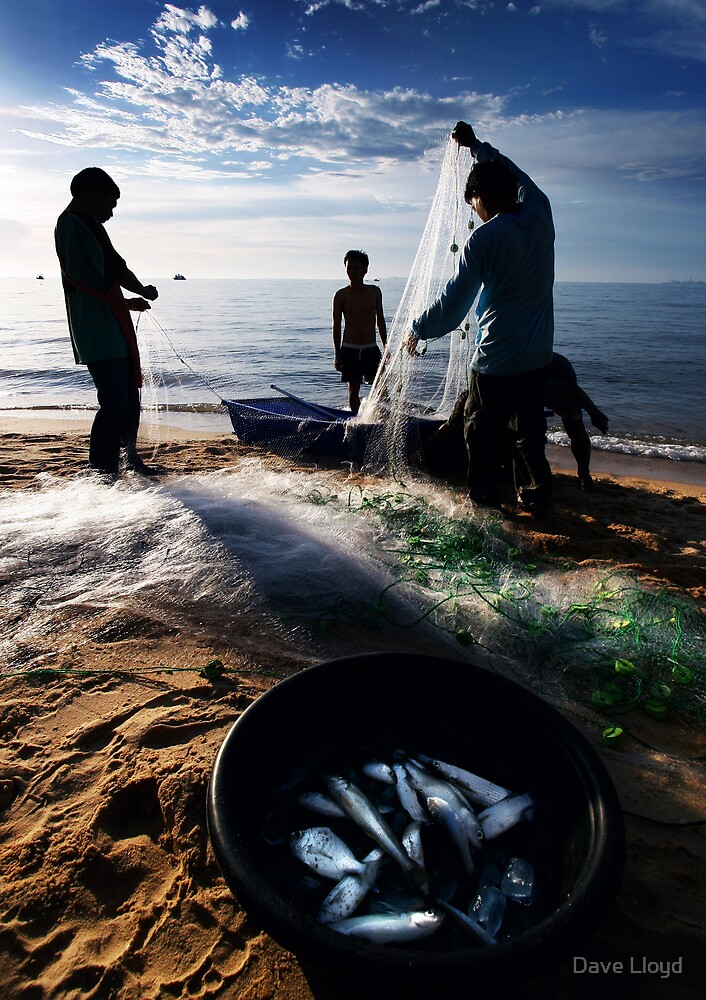 Catch Of The Day by Dave Lloyd