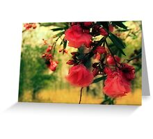 A promise of sweet softness Greeting Card