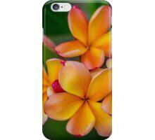 Apricot Frangipani iPhone Case/Skin