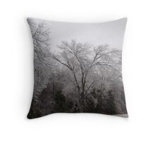 The Iceing in the Mid West Throw Pillow