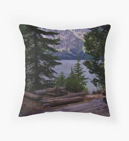 ~ Teton Paradise ~ Throw Pillow