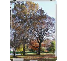 Hoopes Park, Auburn, New York iPad Case/Skin