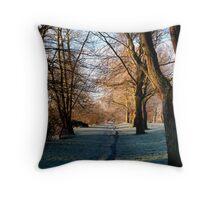 A Riverside Walk Throw Pillow