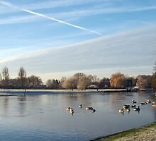 River Thames - Abingdon by sideways