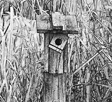 Bird House in Swamp by Cynthia Pulsifer Photography