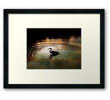 Silhouette of Blue Heron in Rainbow rings Framed Print