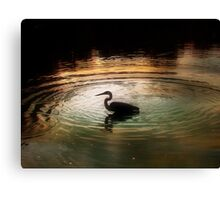 Silhouette of Blue Heron in Rainbow rings Canvas Print