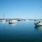 Sail Boats by bluekrypton