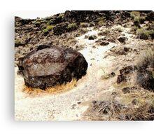Map Rock Canvas Print
