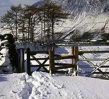 Snowy Gateway by Deborah  Bowness