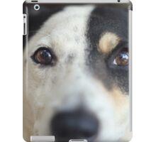 Peering Pooch iPad Case/Skin