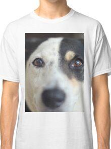 Peering Pooch Classic T-Shirt