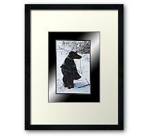 River's Snow Portrait Framed Print