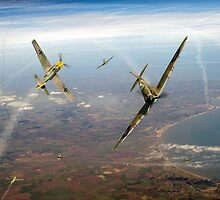 Battle of Britain duellists: Spitfire and Bf 109 head to head by Gary Eason + Flight Artworks