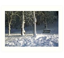 Seat in the Snow Art Print