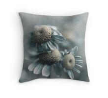 The revelation of three Throw Pillow