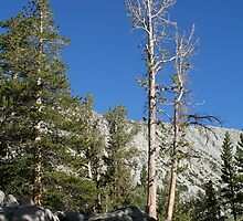 Mammoth Lakes 3 by EarthAnime