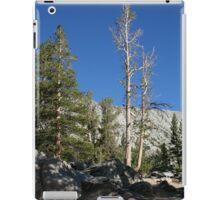 Mammoth Lakes 3 iPad Case/Skin
