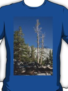Mammoth Lakes 3 T-Shirt
