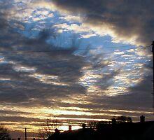 Sunrise 1  11-12-07 by Sharon Perrett
