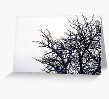 Winter Cherry Tree Greeting Card