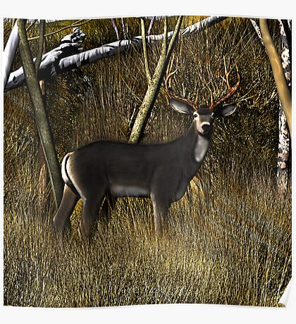 Buck in the Brush Poster