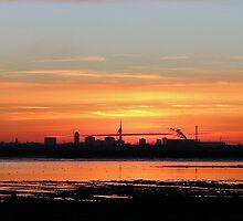 Sunset 5 11-12-07 by Sharon Perrett