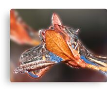 Moose Icicle ! Canvas Print