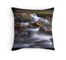 Swirling Waters Throw Pillow