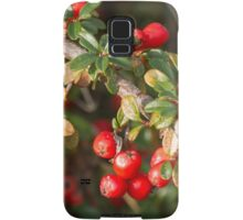 red berries in the garden Samsung Galaxy Case/Skin