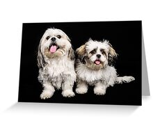 Timmy and Biscuit Greeting Card