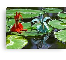 Meeting on the Lily Pad Canvas Print