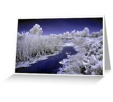 Fivebough Swamp Greeting Card
