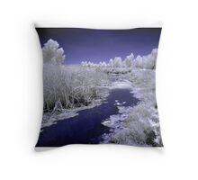 Fivebough Swamp Throw Pillow