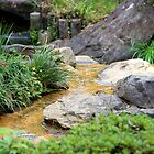 Japanese Garden Stream by Harlequitmix